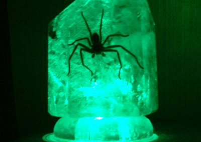 Spider Crystal LED Lamp